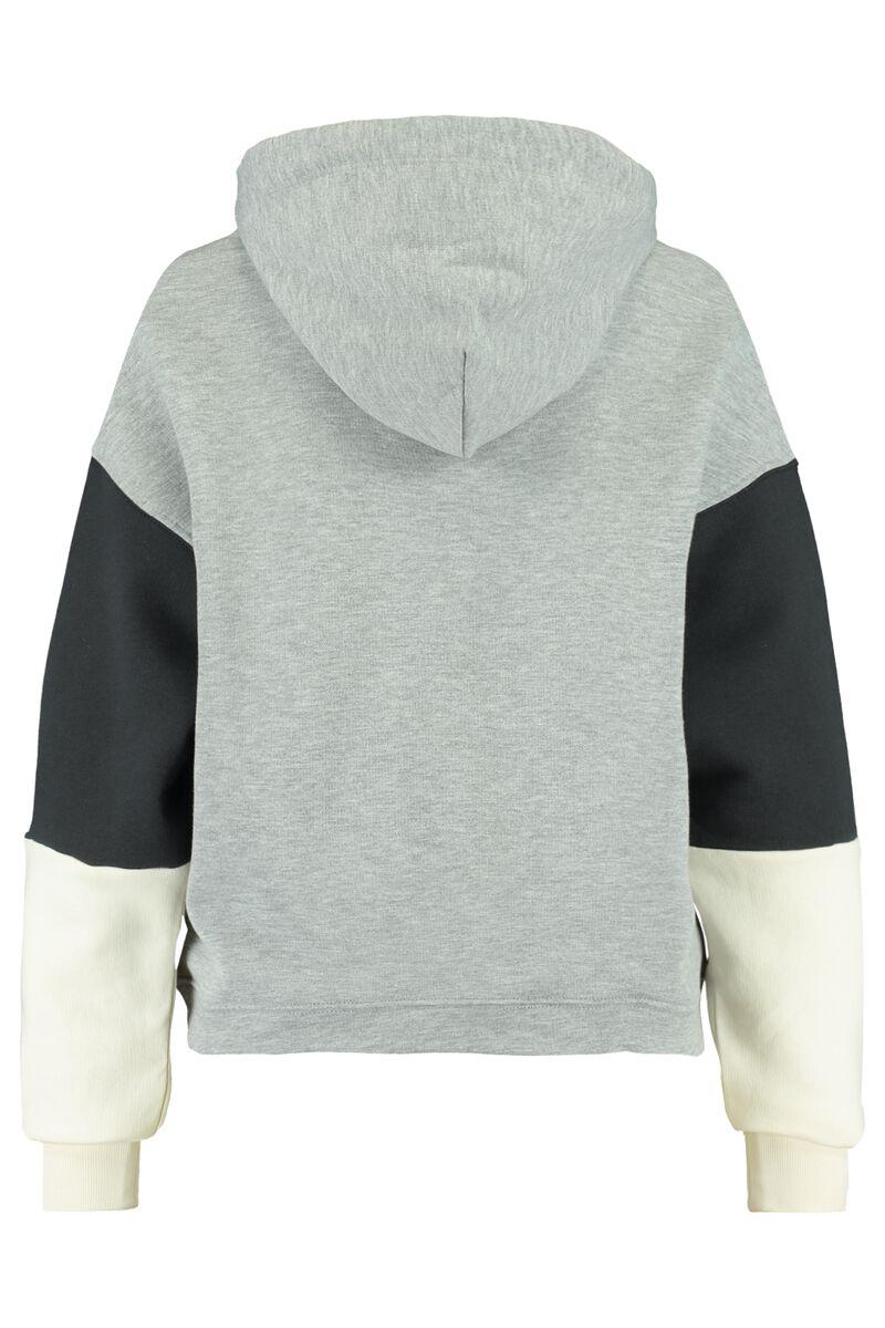 Hoodie Silvy Colourblock hooded
