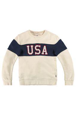 Sweater Sed