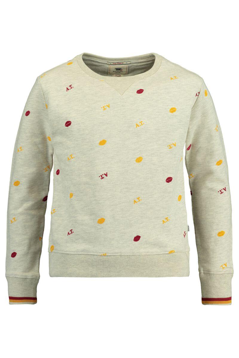 Sweater Sem Jr.
