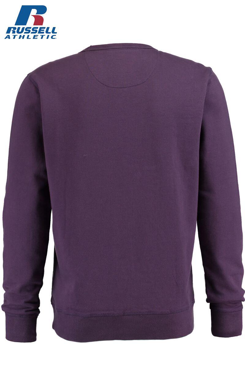 Sweater Saxon