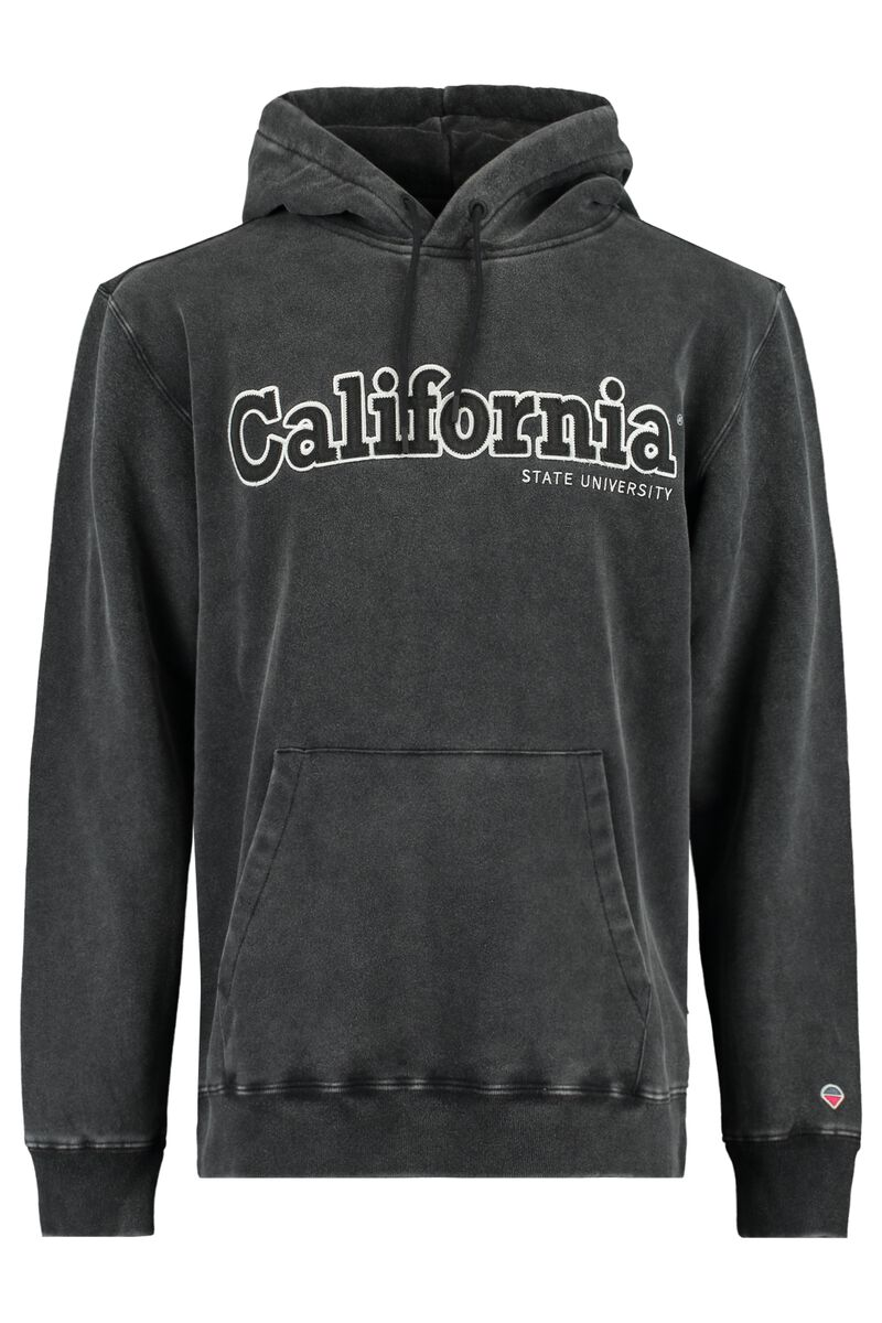 Sweat a capuche Sage hood California