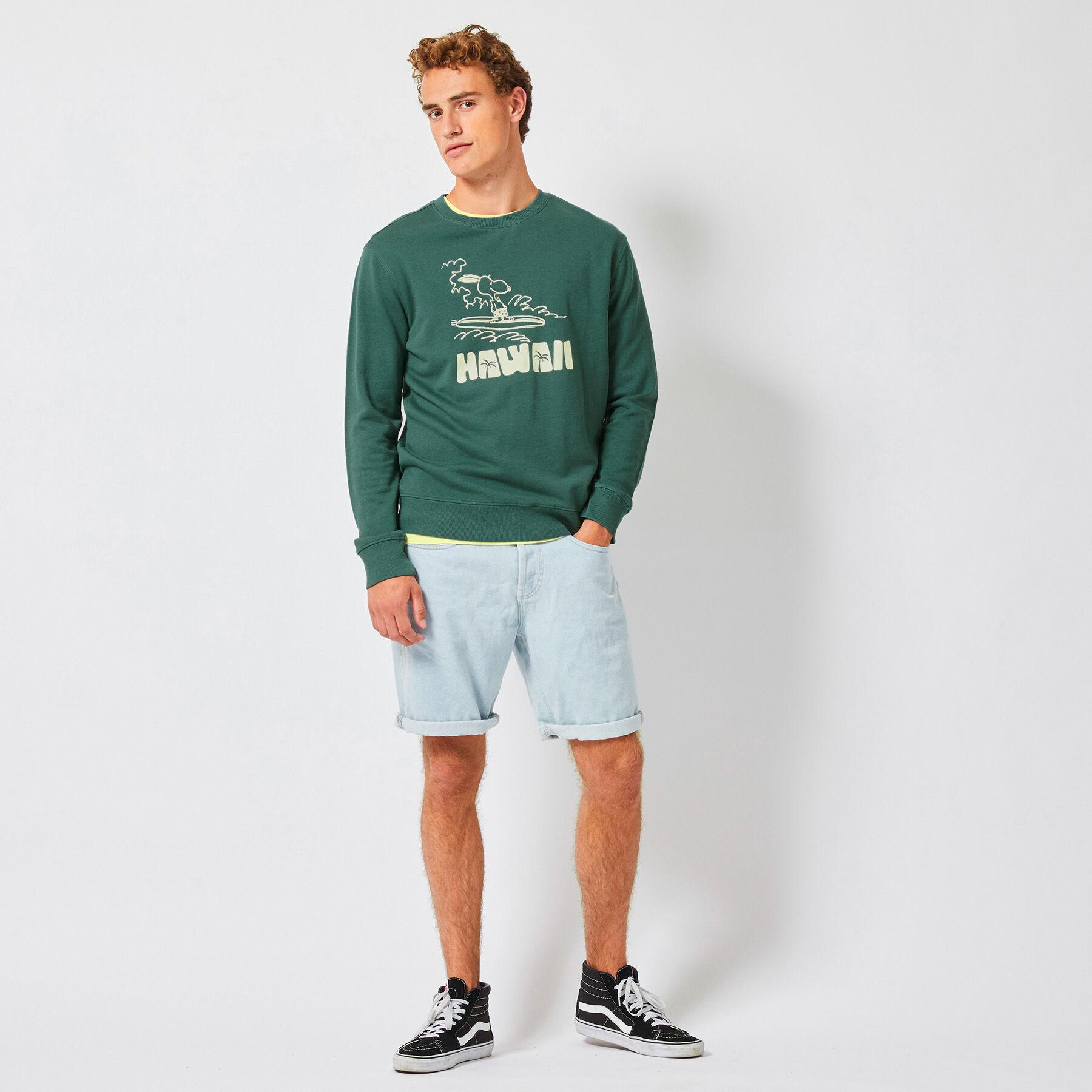 Men Sweater Salvin Hawaii Green Buy Online