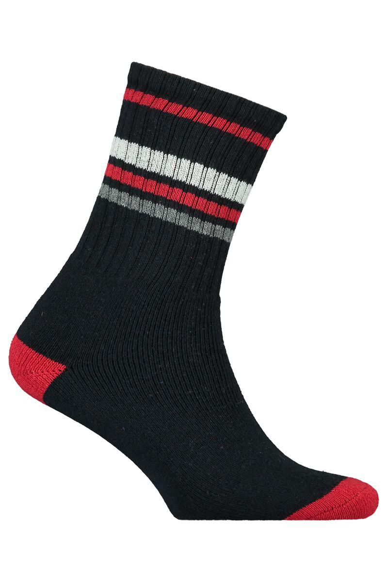 Socks Tolly