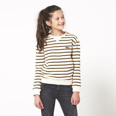 Sweater Suri