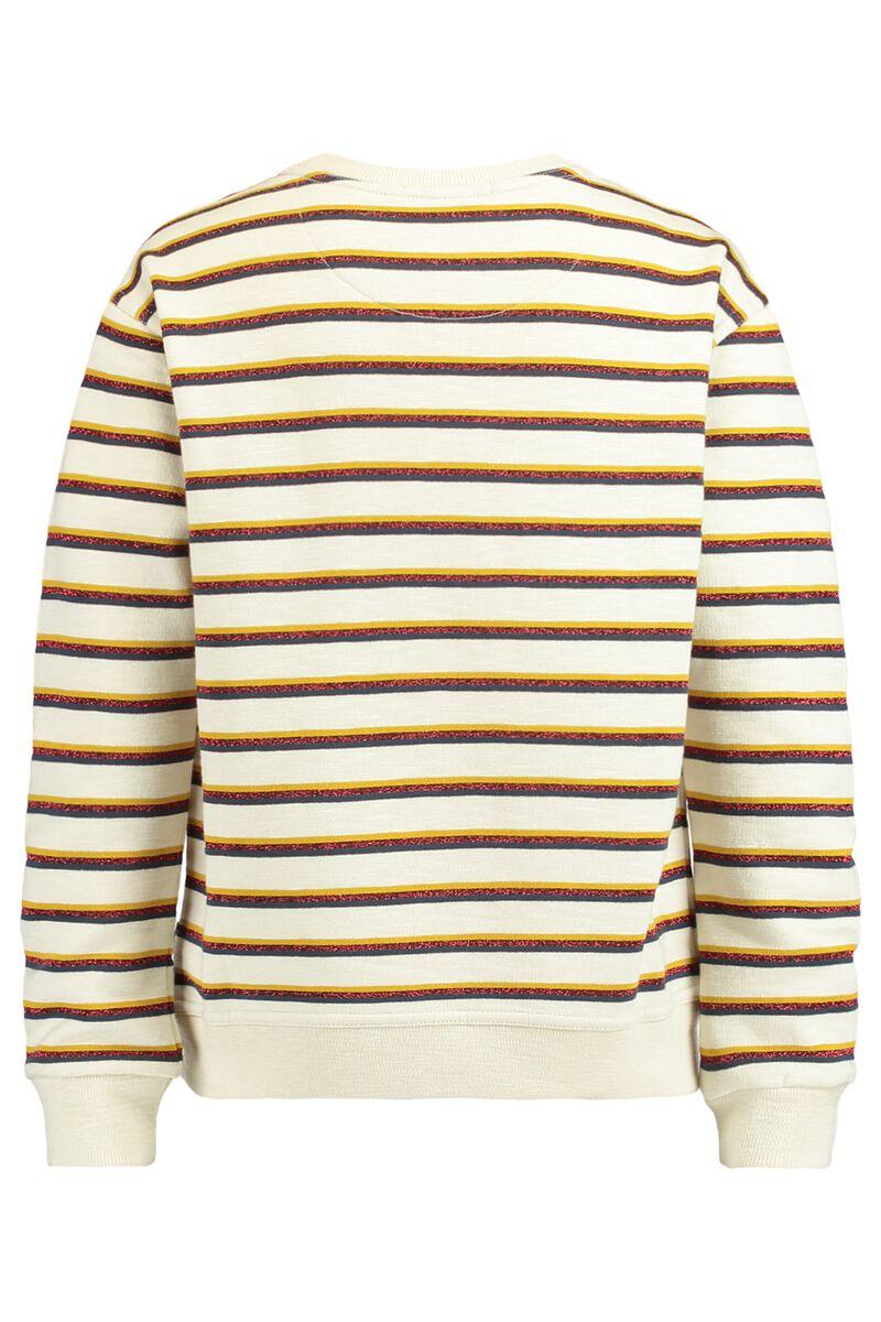 Sweater Suri Jr.
