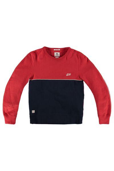 Sweater Steve