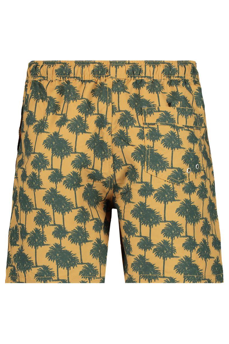 Swimming trunks Arizona Long AOP