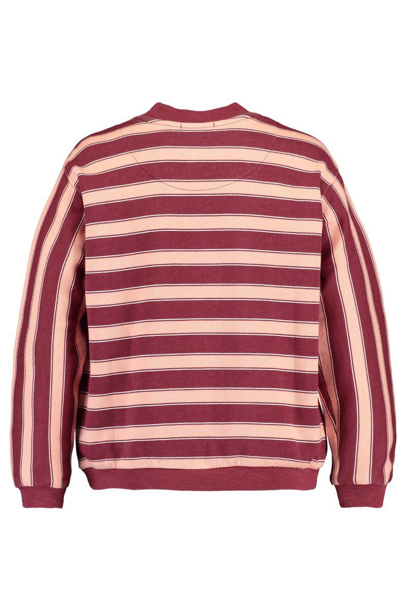 Sweater Saar Jr