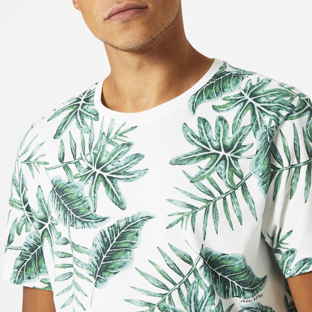 Edwin leaf
