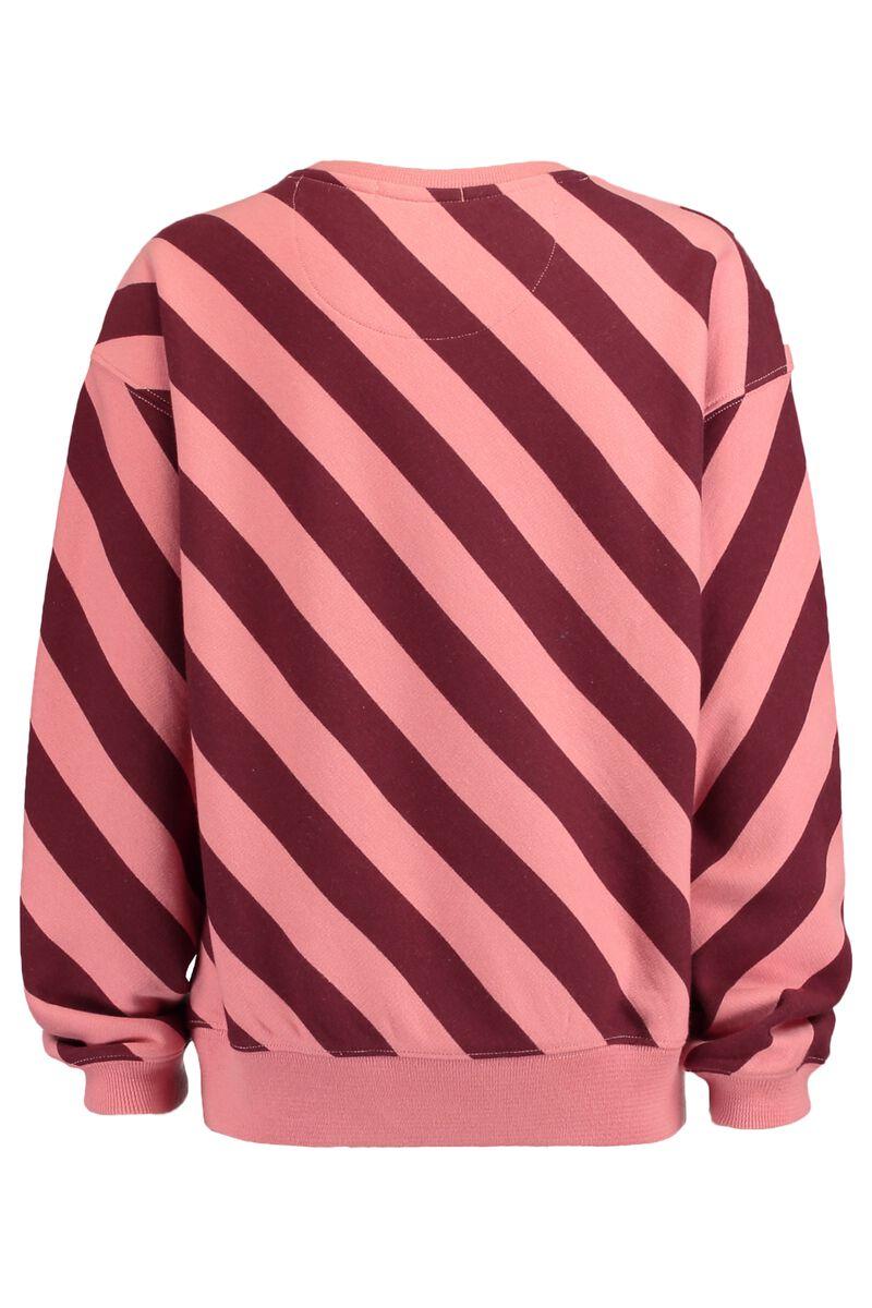 Sweater Steffi Jr.