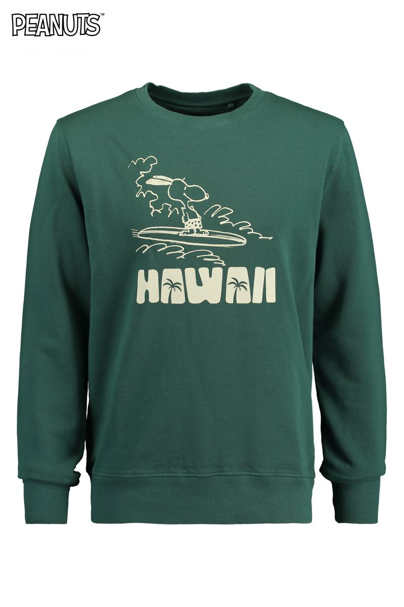 Sweater Salvin Hawaii