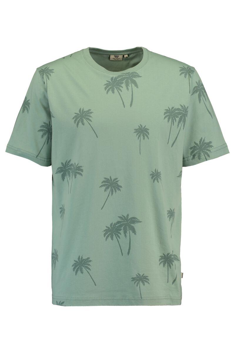 Emmanuel palm