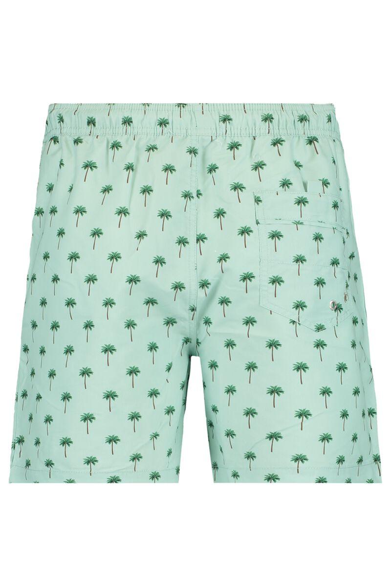 Swimming trunks Arizona FUN AOP
