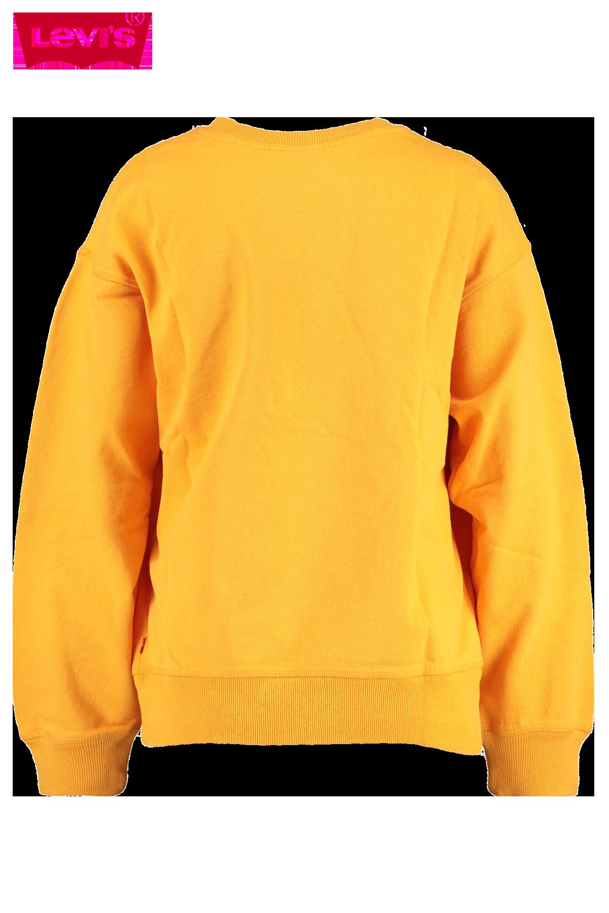 Sweater Graphic standard crew